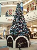 イオンモール名取エアリ クリスマスツリー