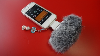 TASCAM windscreen WS-2i