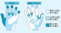 手洗いミスの多い部位
