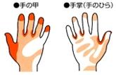 手洗いミスの多い部位_ユニバーサルプレコーション実践マニュアル