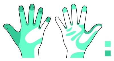 手洗い残しの多い部位