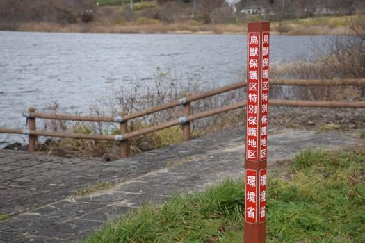 鳥獣保護区特別保護地区 環境省杭