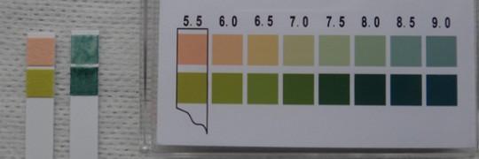写真4 ストーマピュア粘液pH測定結果(左:ブランク、右:粘液)