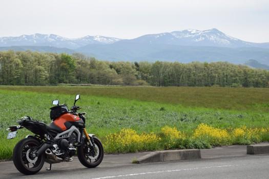 春の泉ヶ岳とMT-09