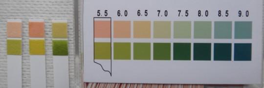 写真1 清拭料及び水道水pH測定結果(左から、ブランク、清拭料、水道水)