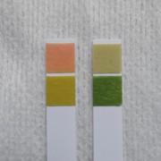 写真2 尿pH6.5(左)、便pH7.0(右)