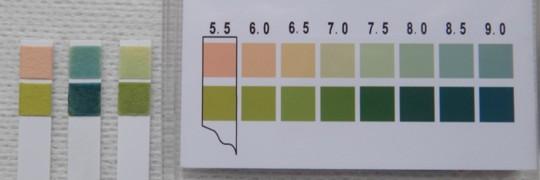 写真9 ストーマ装具消臭潤滑剤pH測定結果(左から、ブランク、デオール、アダプト)