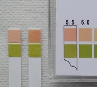 写真6 創傷被覆保護材のpH測定結果(左から、ブランク、アクアセルAg)