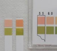 写真13 洗浄料のpH測定結果(左から、ブランク、リモイスクレンズ)