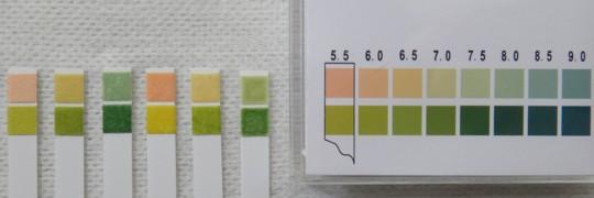 写真12 いろいろな洗浄料のpH測定結果(左から、ブランク、水道水、ハンドウォッシュ、清拭料、ベッドサイドケア、ボディーウォッシュ)