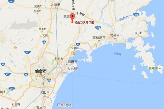 松山コスモス園 Google mapより