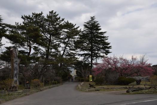 佐藤農場20170402