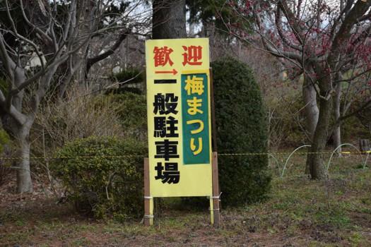佐藤農場 梅まつり一般駐車場看板