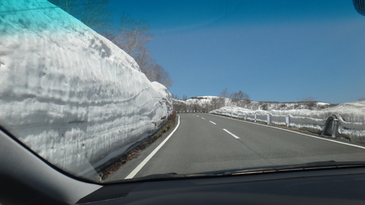 いわかがみ平 道程の雪壁