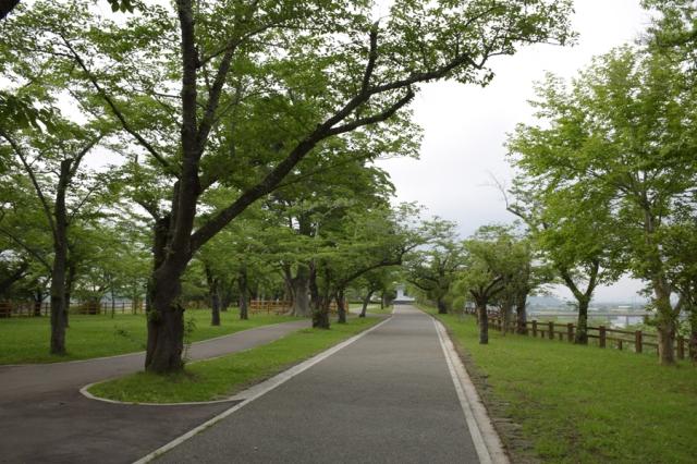 涌谷城山公園