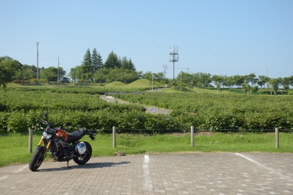 農業伝習館正面駐車場のMT-09
