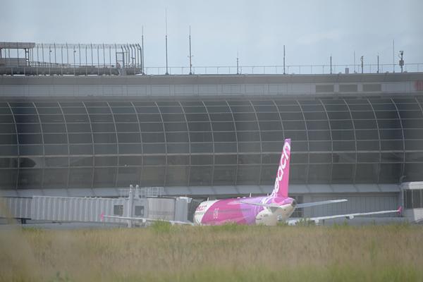 仙台空港北側フェンス越しPeach Aviation.jpg