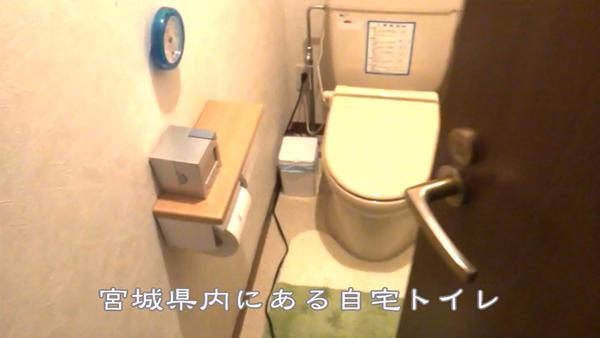 真冬のトイレの防寒対策WPブログ用